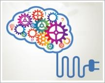 Bilgi Profesyonelinin Yönetimi